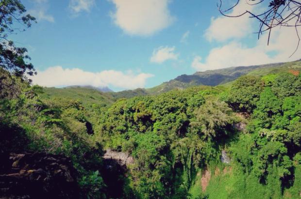 Hawaii - Maui_06-01